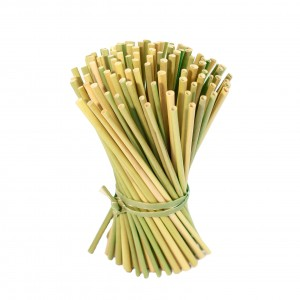DRIED GRASS STRAWS